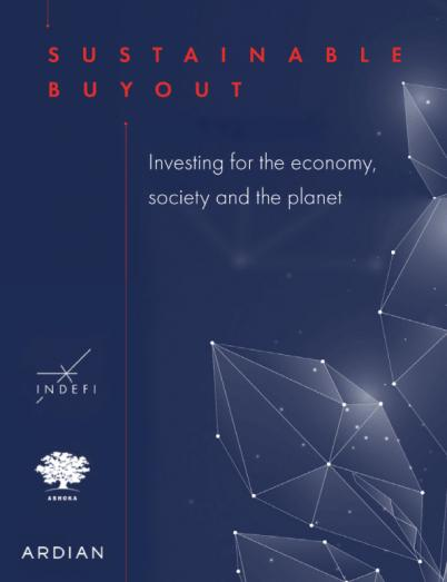 Sustainable buyout Study